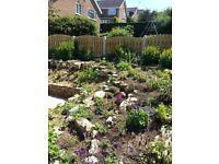 Shropshire Country Gardens- Quality handmade fencing, gates, decking & paving