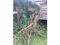 Free firewood/kindling