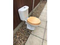 Roca toilet