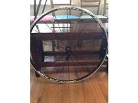 Mavic Aksium Elite 700C Front Bicycle Wheel - Brand New