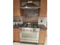 Delonghi Professional range cooker and extractor hood