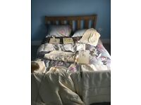 Zeddy and parsnip bedding