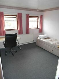 Single Room to rent in spacious shared house