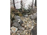 Garden rocks and stones. Free to collector