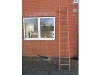 Ladders, Heavy Duty, 3metres