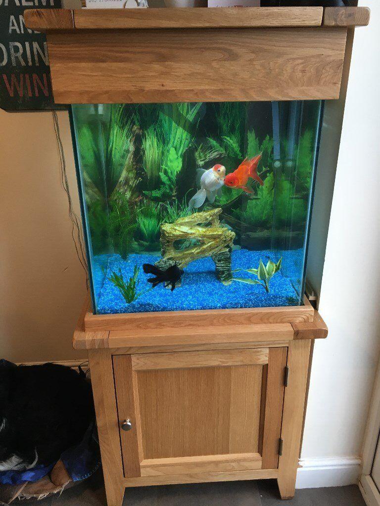Freshwater aquarium no fish - Solid Oak 155 Litre Aquarium With All The Equipment No Fish