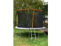 12ft (approx) trampoline with safety net and ladder