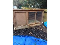 Rabbit/ Ginea Pig Hutch and Accessories