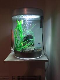 60 ltr biorb aquarium