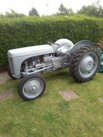 1951 Ferguson TE20 Tractor
