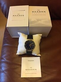 Skagen SKW6092 Watch