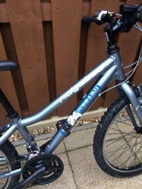 24 inch Ridgeback bike
