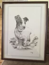 Hand drawn framed portrait of a Jack Russell dog
