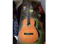 Brand new guitar