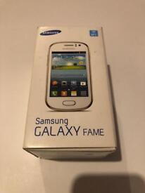 Samsung Galaxy Fame GT-S6810P on O2