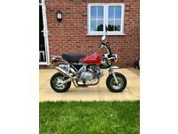 Monkeybike 125 Honda replica