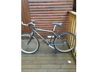 """Giant Boulder 550 Retro mountain bike 16"""" frame"""