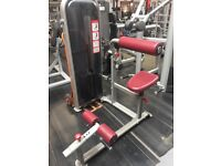 Commercial Abdominal crunch back extension machine 2 in one