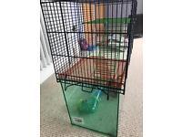 Gerbil/Hamster cage