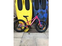 specialized fat boy 20inch girls mountain bike,7 speed,disc brakes