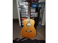 takamine g series acoustic guitar with case