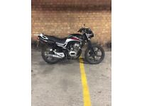 LEXMOTO ARROW 125cc 12 PLATE