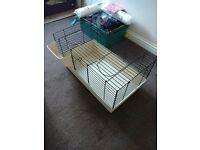 Rabbit - guinnea pig - small pet indoor hutch