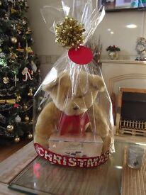 Christmas Teddy Bear Gift