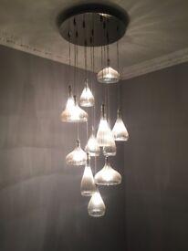 12 bulb ceiling light