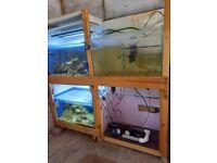 Fish Tanks & a Few Accessories
