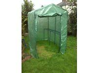 Plastic Greenhouse 6ft x 4ft