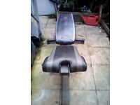 dumbbells 2 x 12.5 kg and weight bench