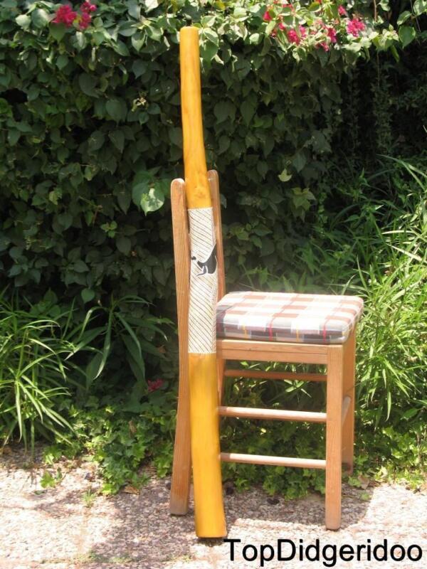 "47""120cm DIDGERIDOO+Bag+Beeswax Mouthpiece Teak Wood KANGAROO Hand Painted Art"