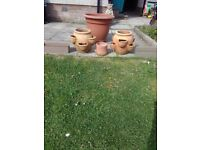 X2 strawberry planters, 1 clay planter for growing herbs