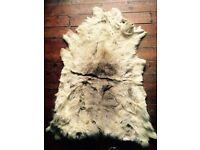 Reindeer fur rug