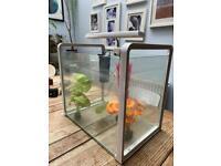 Fish tank starter kit - everything you need