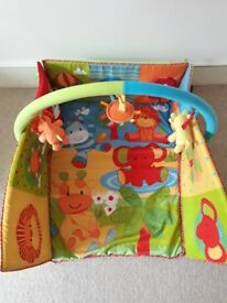 Baby Play Mat - good condition