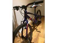 Boys wiggins chartres mountain bike