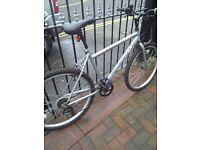 Trax tri bike