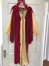 Tudor Dressing Up Dress