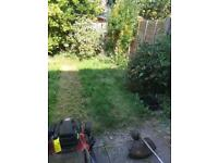 Garden work done hedges lawns or tidy ups free qy