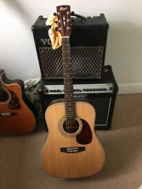 Court Earth 70 NS Acoustic Guitar.