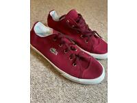 Mens Lacoste casual shoes brand new