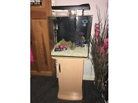 60L marine fish tank with stand