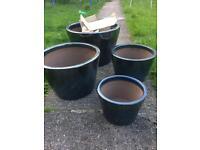 Glazed garden plant pots