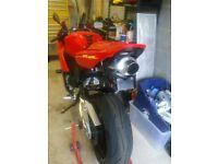 Honda CBR1000RR Fireblade Exhaust System