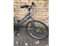 Ladies 6 speed hybrid bike xfx