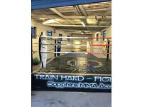 MUAY THAI 1-2-1 & classes South Croydon