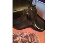 "15"" seat black gp saddle"