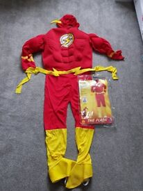 The Flash Super Hero Costume (Medium)